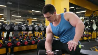 Bodybuilding in the gym - young muscular man performs training for biceps with dumbbells - slider