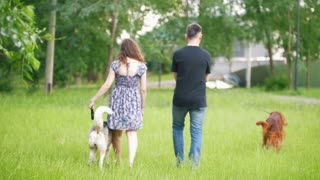 Couple with pets walking in park - man and woman walks with irish setter and husky