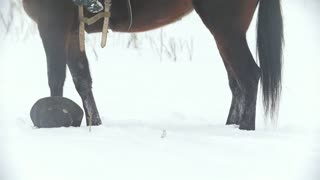 Cowgirl young woman gets off from her horse at winter snowfall