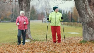 Elderly woman in autumn park doing warm up before nordic walking