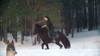 Equestrian sport - beautiful longhaired woman riding a black horse through the deep drifts in the snowy forest