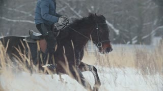 Equestrian sport - rider on red horse galloping in snowy field