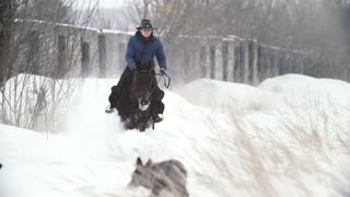 Equestrian sport - rider woman on fast horse galloping in snowy field