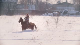 Equestrian sport - rider woman on horse galloping in snowy field