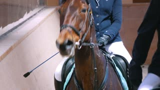 Female rider on the horse galloping at show jumping competition