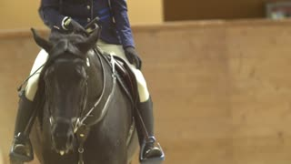 Female rider on the horse rideing at show jumping competition