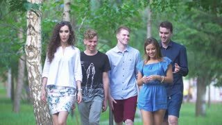 Five people - young friends walking in the summer park