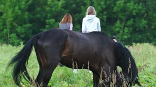 Girl rider climbs on a horse and another girl on horseback sent to the side of the forest