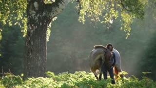 Girl with a horse on a walk in the woods early in the morning next to a beautiful tree in the rays of dawn