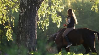Girl with long hair walks on horseback around the tree in the early morning in the sun