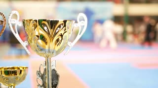 Golden cup in front of fighting at the karate championship