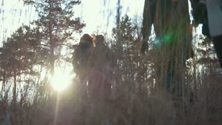 Group of hikers going through the woods in the sunset