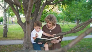 Little boy reading a book with grandmother on the branch in the park