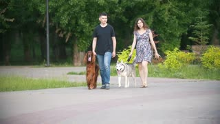 Man and woman - family couple with pets dogs walking in park - irish setter and husky - slow-motion