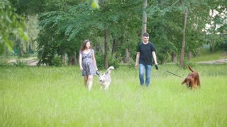 Man and woman - family couple with pets dogs walking in park - irish setter and husky