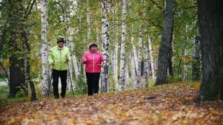 Mature women walking in an autumn park during a scandinavian walk. Slow motion