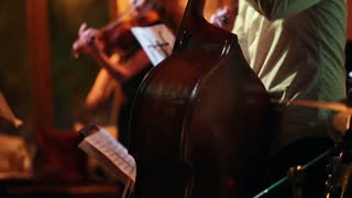Musicians play in a jazz bar, in the foreground a man with a contrabass