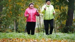 Old women walking in an autumn park during a scandinavian walk