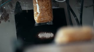 Process of packaging macaroni on the industrial equipment of macaroni manufacturing