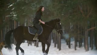 Professional beautiful longhaired woman riding a black horse through the deep snow in the forest, independent stallion prancing and snorting