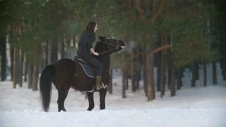 Professional beautiful longhaired woman riding a black horse through the deep snow in the forest, independent stallion prancing