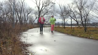 Sport for elderly women in autumn park - modern healthy training, nordic walking