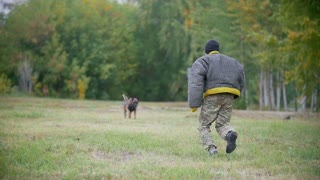 Training sheepdog on attacking on an arm. The man wearing protection