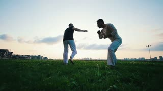Two athletic men demonstrate the martial art of capoeira on the grass