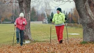 Two elderly woman in autumn park doing warm up before nordic walking