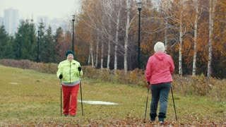 Two elderly woman in autumn park have nordic walking among autumn cold park