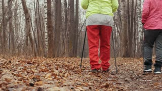 Two elderly woman in autumn park have training - nordic walking - rear view