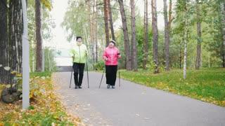 Two elderly women are doing Scandinavian walking in the park. Autumn
