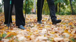 Two elderly women are doing Scandinavian walking in the park. Feet. Autumn