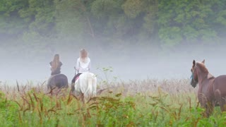 Two young girls riding horses go into the fog, the third horse of brown color goes after them