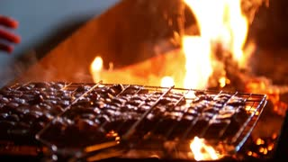 Winter BBQ Grill - fried meat outdoor at night