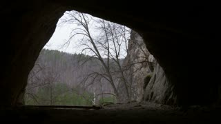 Young hiker in helmet enters to the dark cave with flashlight and deep forest at background