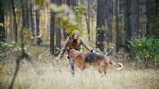 Young attractive woman with red hair playing with her pet - german shepherd - walking at autumn forest - the dog runs into the Bush for a stick, slow motion