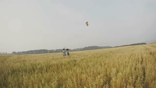 Young couple - man and woman running with kite on meadow of ears wheat. wide angle