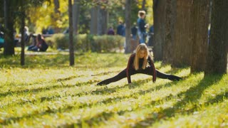 Young fitness female model Exercising in a Meadow at autumn park, Sports Outdoor Activities concept - flexibility