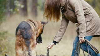 Young woman and her pet - german shepherd - walking on a autumn forest - girl playing with a dog in the woods, close up