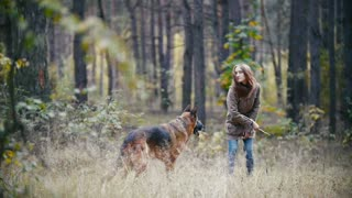 Young woman and her pet - german shepherd - walking on a autumn forest, girl throws a stick for dog who stuck out his tongue, slow motion