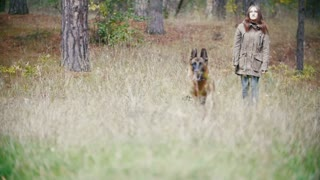 Young woman and her pet - german shepherd - walking on a autumn forest, slow motion - dog running for stick