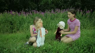 Girls play with dolls on grass.Young children play with dolls in the grass outdoors behind the girls beautiful flowers.