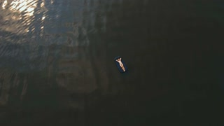 Young girl floats on an inflatable mattress in the lake. Aerial view:Girl is happy and float on inflatable mattress. Beautiful girl floating on inflatable raft in the river. Teen girl relaxing on