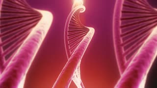 Rotating DNA With Soft Background And Seamless Loop. Genetic Engineering Scientific Concept