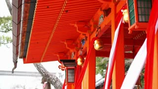 Asian Japanese girl praying at red shinto temple with bell
