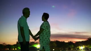 Asian senior couple holding hand enjoy moment of happy life together with magic hour sky and moon background