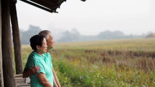 Asian senior couple sitting in the gazebo next to rice field. Farm and agricultural business