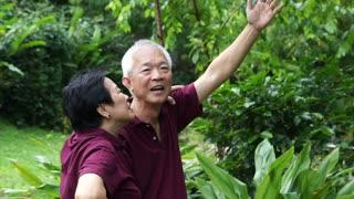 Asian senior couple walking and checking their melon at their backyard garden