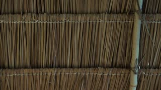 Asian traditional grass straw roof construction design from inside